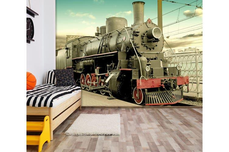 3D Black Train 161 Vehicle Wall Murals Wallpaper Murals Self-adhesive Vinyl, XL 208cm x 146cm (WxH)(82''x58'')