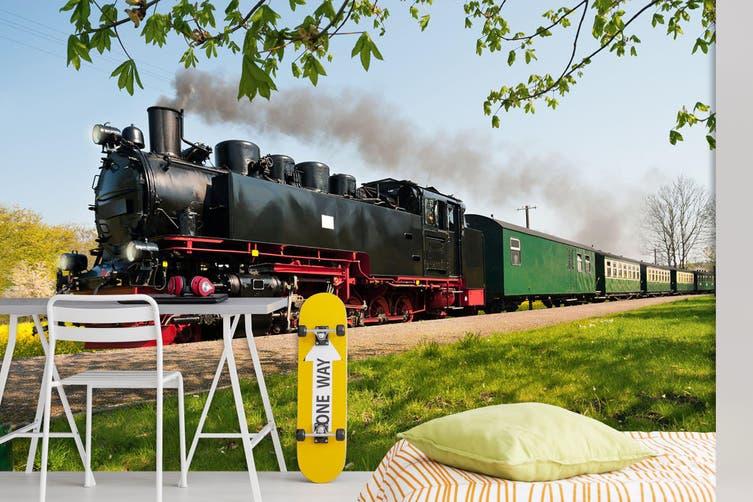 3D Tree Train Smoke 159 Vehicle Wall Murals Wallpaper Murals Woven paper (need glue), XXL 312cm x 219cm (WxH)(123''x87'')