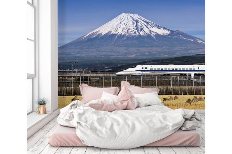 3D Snow Mountain Train 154 Vehicle Wall Murals Wallpaper Murals Woven paper (need glue), XL 208cm x 146cm (WxH)(82''x58'')