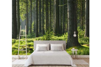 3D Forest Green Grass 064 Wall Murals Woven paper (need glue) Wallpaper Murals