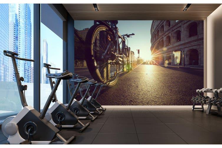 3D Sunset Bike 082 Wall Murals Woven paper (need glue), XL 208cm x 146cm (WxH)(82''x58'')