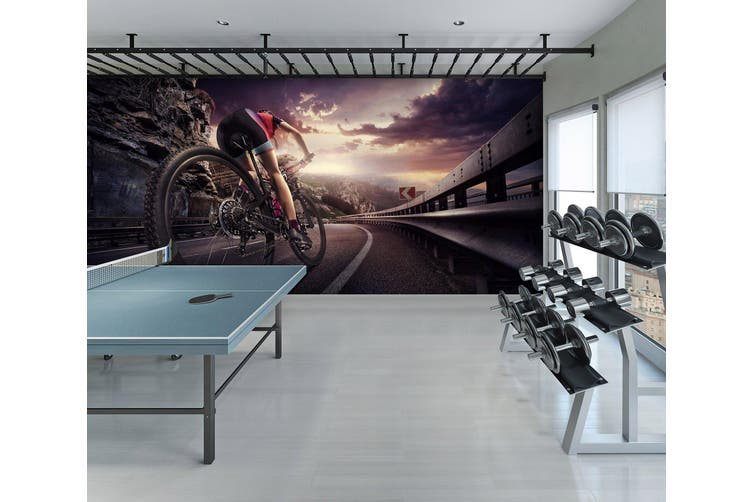 3D Ride A Bike 071 Wall Murals Woven paper (need glue), XXL 312cm x 219cm (WxH)(123''x87'')