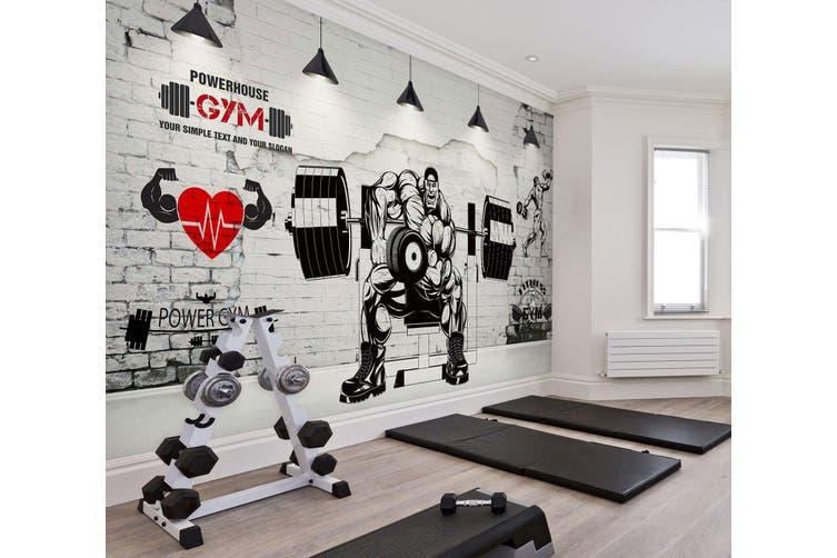 3D Muscle Barbell 047 Wall Murals Self-adhesive Vinyl, XXL 312cm x 219cm (WxH)(123''x87'')