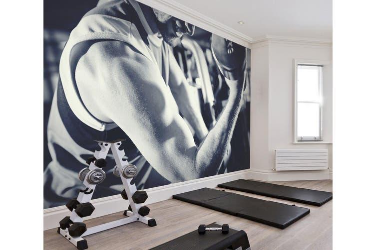 3D One-Handed Dumbbell 046 Wall Murals Self-adhesive Vinyl, XL 208cm x 146cm (WxH)(82''x58'')