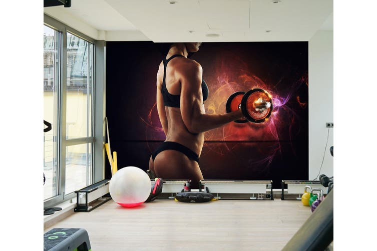 3D One-Handed Dumbbell 042 Wall Murals Woven paper (need glue), XXXXL 520cm x 290cm (WxH)(205''x114'')