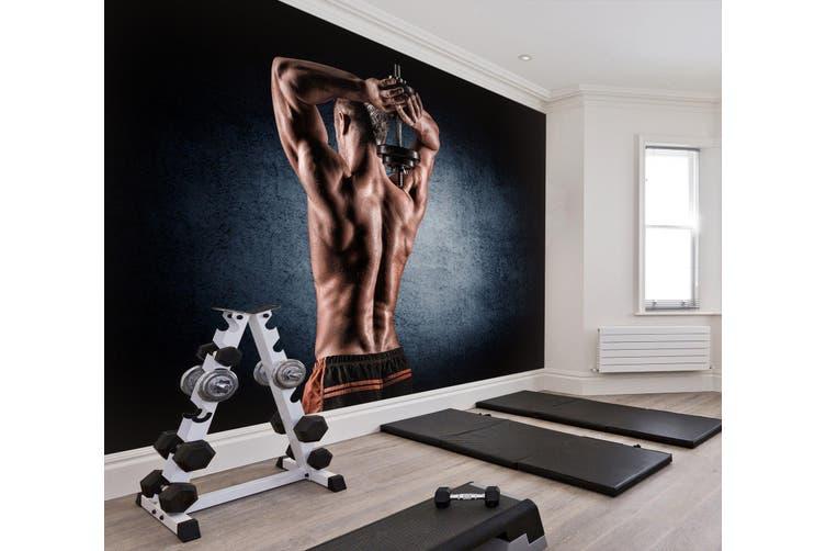 3D Lifting Dumbbell 041 Wall Murals Woven paper (need glue), XL 208cm x 146cm (WxH)(82''x58'')