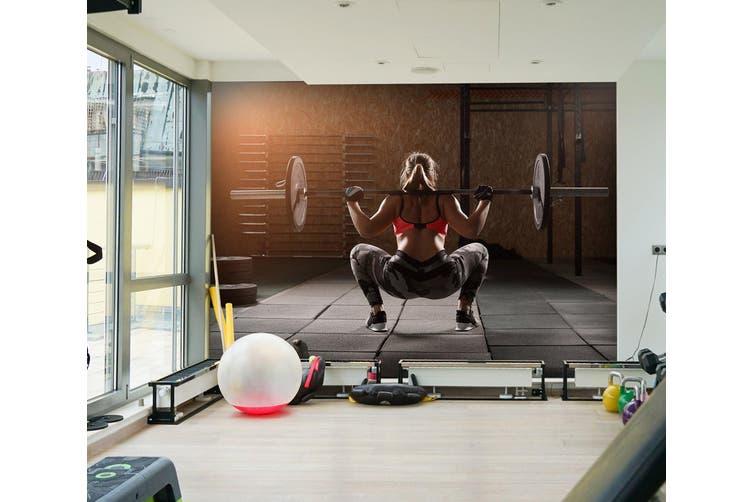 3D Squat Dumbbell 038 Wall Murals Woven paper (need glue), XXXXL 520cm x 290cm (WxH)(205''x114'')
