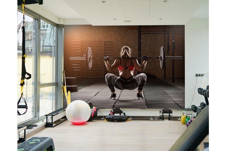 3D Squat Dumbbell 038 Wall Murals Self-adhesive Vinyl, XXXXL 520cm x 290cm (WxH)(205''x114'')
