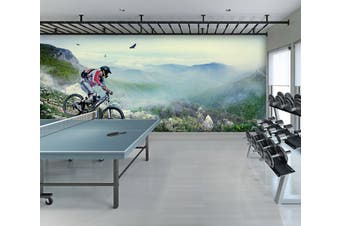 3D Mountain Bike 033 Wall Murals Woven paper (need glue), XL 208cm x 146cm (WxH)(82''x58'')