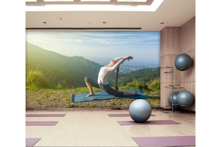 3D Morning Yoga 032 Wall Murals Self-adhesive Vinyl, XXL 312cm x 219cm (WxH)(123''x87'')