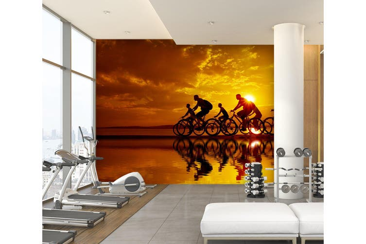 3D Cycling 028 Wall Murals Woven paper (need glue), XXXXL 520cm x 290cm (WxH)(205''x114'')