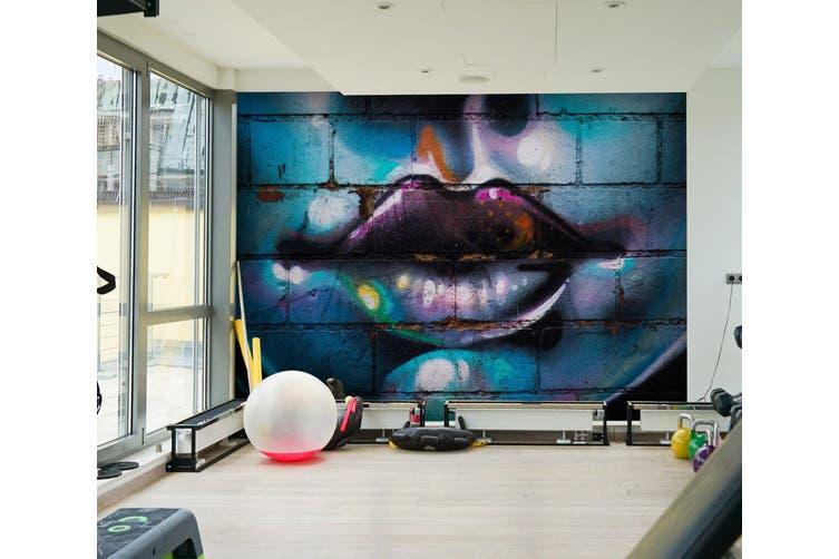 3D Graffiti Lips 020 Wall Murals Woven paper (need glue), XXL 312cm x 219cm (WxH)(123''x87'')