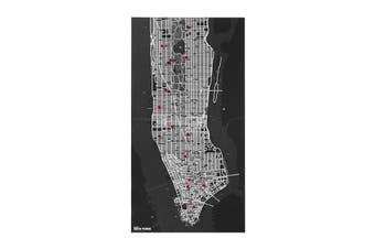 Pin City New York Felt Map