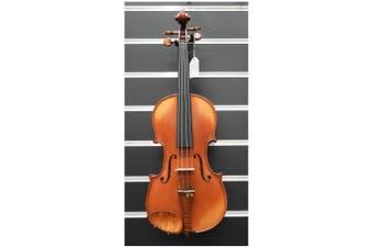 Gliga Violin 4/4 Vasile Genova professional Violin Thomastik Strings Aubert Bridge