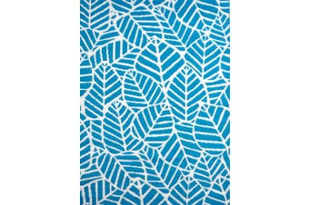 Vibrant & Reversible Outdoor/Indoor Mats - Chatai A006 - Aqua/White