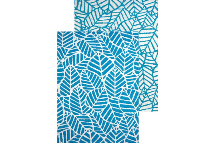 Vibrant & Reversible Outdoor/Indoor Mats - Chatai A006 - Aqua/White - 120x170