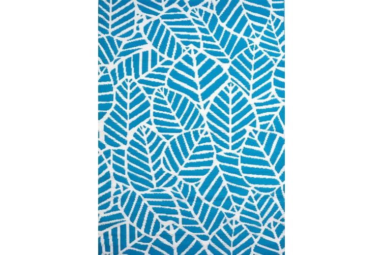 Vibrant & Reversible Outdoor/Indoor Mats - Chatai A006 - Aqua/White - 150x240