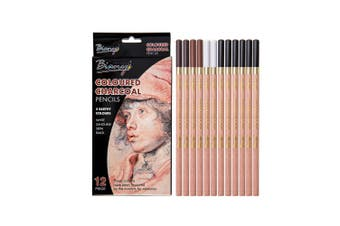 Quality 12pce Coloured Charcoal Pencils in Box Sketching and Drawing Skin Tones