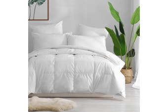 Dreamaker Luxury Winter 70/30 Goose Down & Feather Quilt Cotton Japara Cover Queen Bed