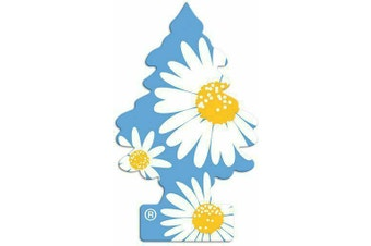 New Little Trees Air Freshener - DAISY FIELDS - Car & Home & Office