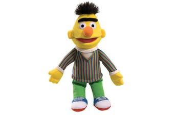 Bert Soft Toy