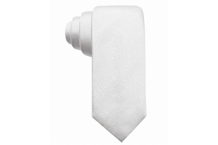 Alfani Men's Silver Colfax Solid Shimmer Fleck Skinny Neck Tie Silk