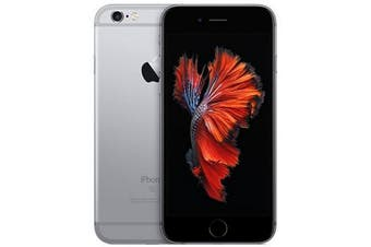 Apple iPhone 6s 4G LTE (64GB, Space Gray) - Used as Demo