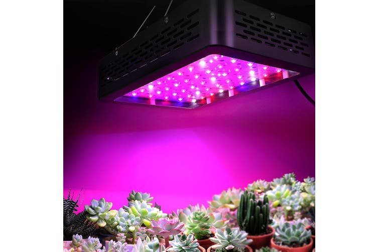 LED Grow Light 300W Full Spectrum with Hanging Kit for Indoor Plant Growth