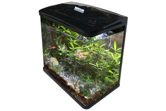 35L Fish Tank Aquarium Curved Glass Filter Pump Light WithCabinet Stand