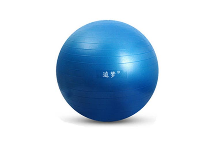 Yoga Balance Stability Swiss Ball for Fitness Exercise Training with Foot Pump 65cm