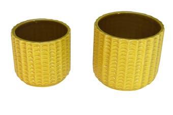 S/2 mustard pot
