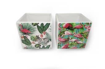 S/2 bird design pots
