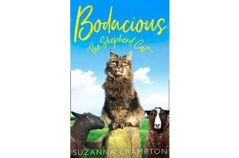 Bodacious - The Shepherd Cat