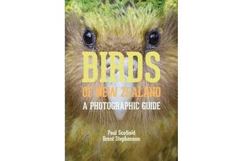 Birds of New Zealand - A Photographic Guide