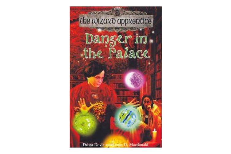 Wizard Apprentice 4 - Danger in Palace