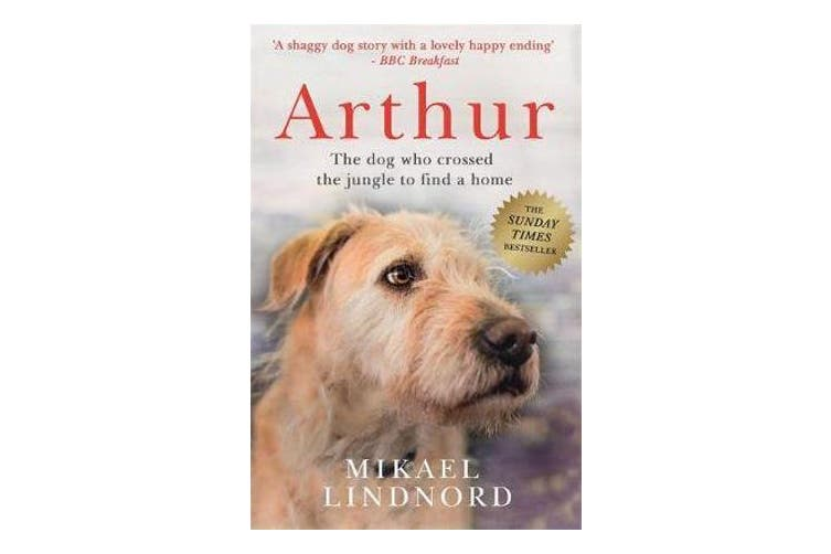 Arthur - The dog who crossed the jungle to find a home *SOON TO BE A MAJOR MOVIE 'ARTHUR THE KING' STARRING MARK WAHLBERG*