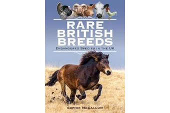 Rare British Breeds - Endangered Species in the UK