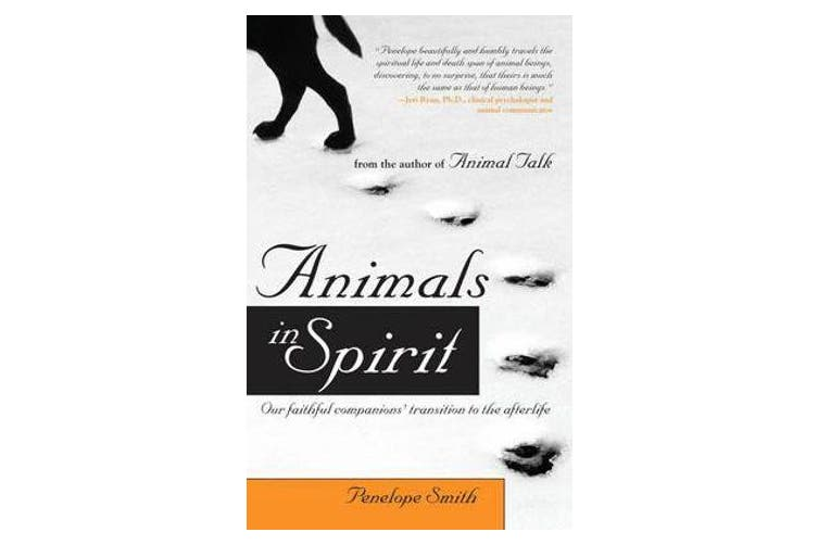Animals in Spirit - Our Faithful Companions Transition to the Afterlife