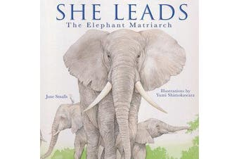 She Leads - The Elephant Matriarch