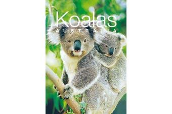 Discovering Australian Koalas Gift Book