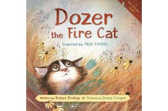 Dozer the Fire Cat