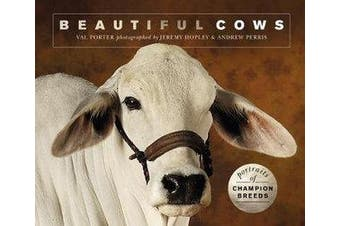 Beautiful Cows - Portraits of champion breeds