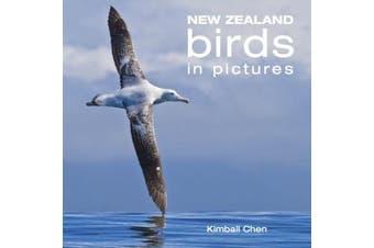 New Zealand Birds in Pictures