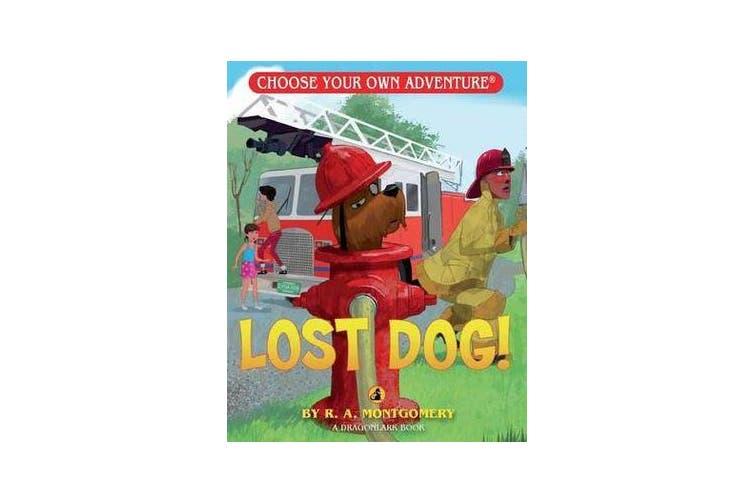 Lost Dog!