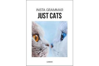 Insta Grammar Just Cats