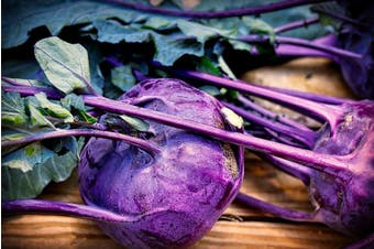KOHL RABI 'Purple Vienna' - Standard Packet (see description for seed quantity)