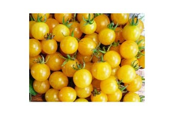 TOMATO 'Yellow Cherry Honeybee' - Standard packet (see description for seed quantity)