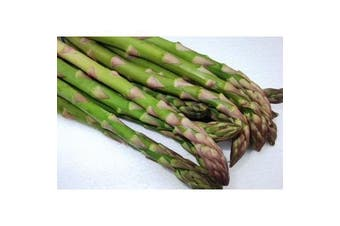 ASPARAGUS 'Mary Washington' - Standard packet (see description for seed quantity)
