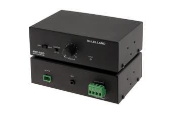 Class D Power Amplifier 20W + 20W Mclelland Ampd20