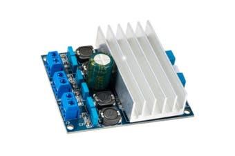 2X 50W Amplifier Board Class D Diy